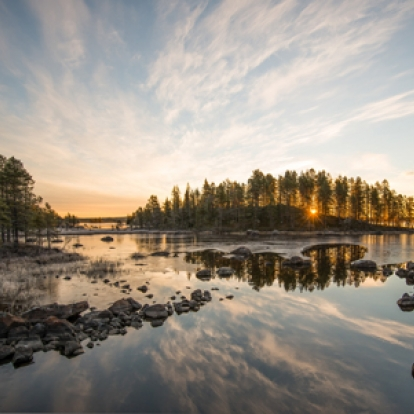 Naturbild inlandet  Foto:Peter Rosén