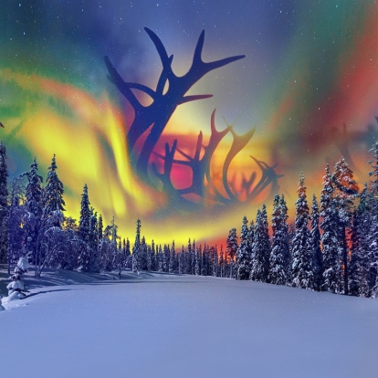 Northern lights and reindeer
